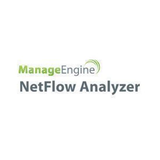 Picture of NetFlow Analyzer Large Enterprise Edition - Perpetual