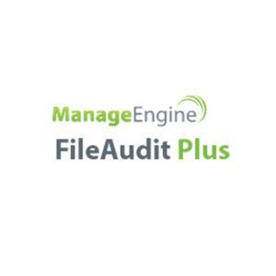 Picture of FileAudit Plus Standard Edition - Subscription
